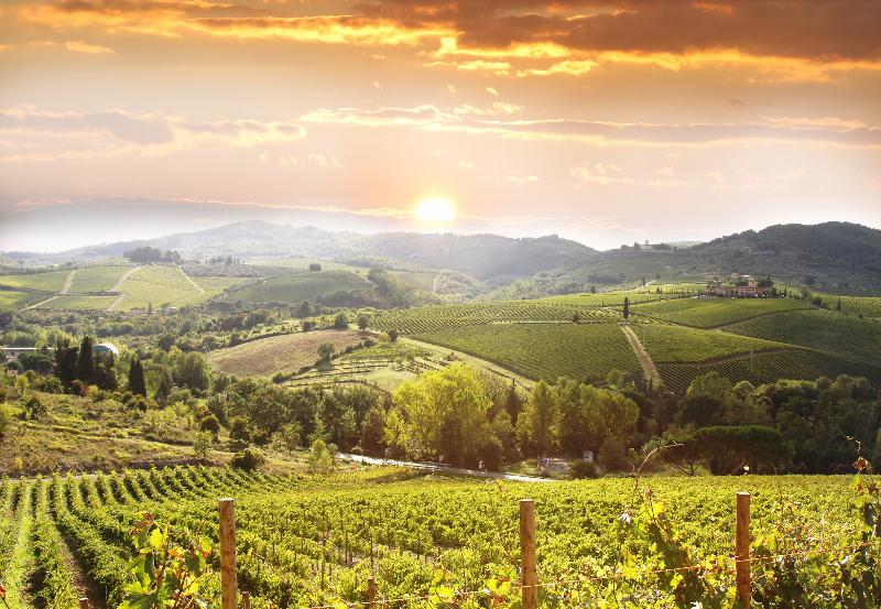 Toscana: la meta preferita dagli enoappassionati