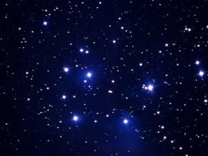 Calici di stelle per la notte di San Lorenzo