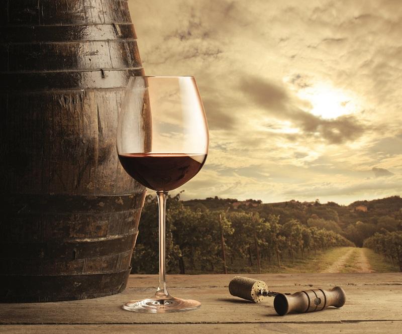 vino-top_life-magazine-Siena