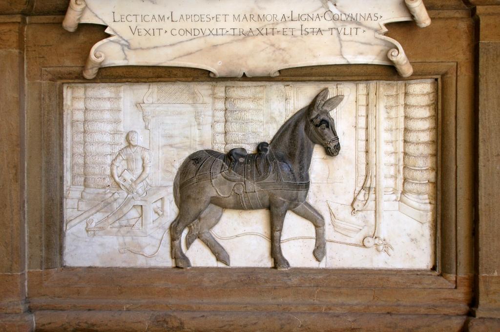Monumento alla mula . Cortile di Palazzo Pitti