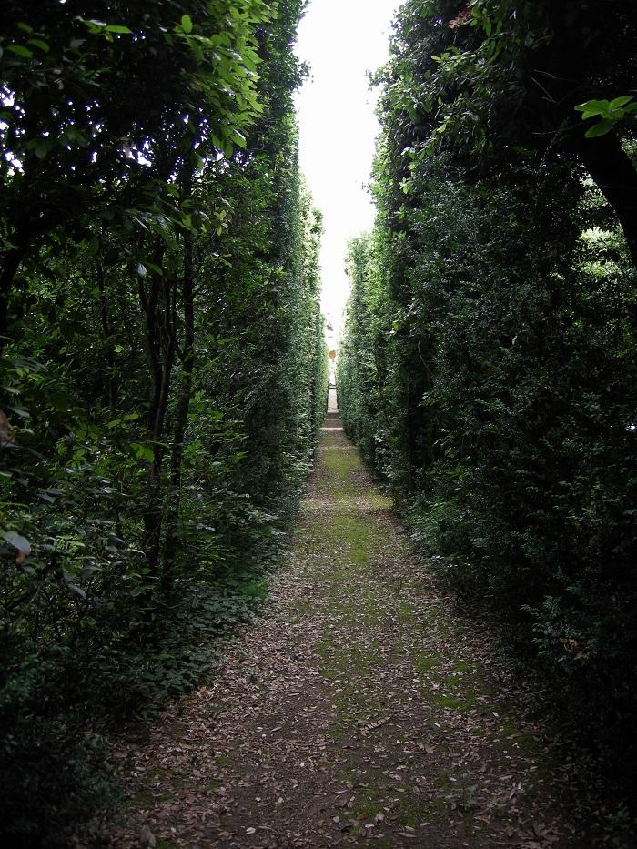 Villa_la_quiete,_giardino,_passaggio_nella_ragnaia