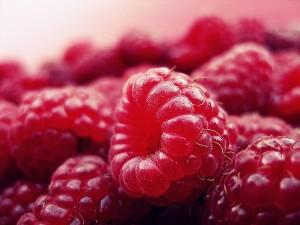 LAMPONI raspberry-427390_1280